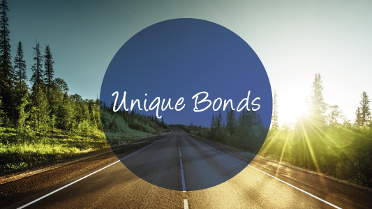 Banner unique bonds 04