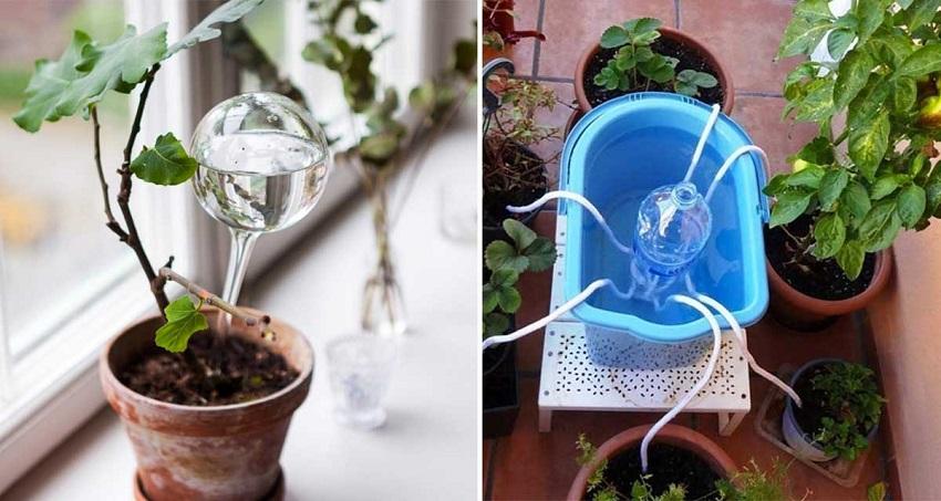 Cuidado de las plantas en vacaciones - Riego por goteo para macetas ...